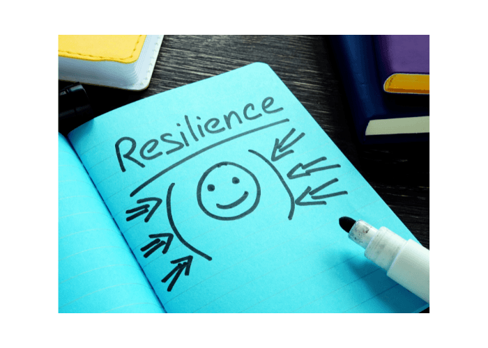 the four types of resiliency